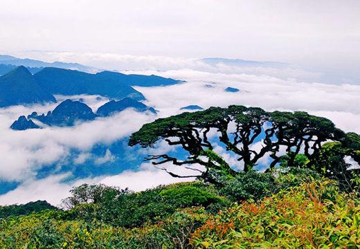 广西金秀:圣堂山云海景色壮美如画